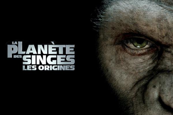 dissertation la planete des singes La planète des singes – suprématie film streaming vf , la planète des singes – suprématie film gratuit en ligne, la planète des singes – suprématie gratuit 2017, telecharger la planète des singes – suprématie gratuit,.